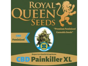 CBD PainKiller XL