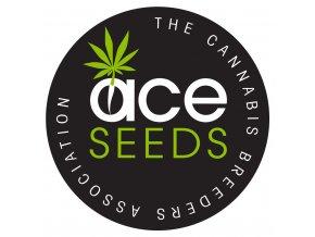 ace seeds 800x1200 0