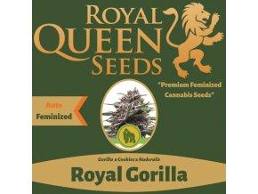 Výprodej Royal Gorilla Auto