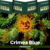 crimea-blue-barneys-farm-feminized-semena-konopi