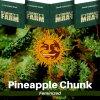 pineapple-chunk-barneys-farm-feminized-semena-konopi