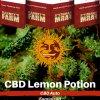 lemon-potion-cbd-barneys-farm-autoflower-feminized-semena-konopi