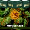 utopia-haze-barneys-farm-feminized-semena-konopi