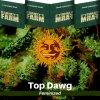 top-dawg-barneys-farm-feminized-semena-konopi