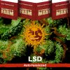 lsd-barneys-farm-autoflower-feminized-semena-konopi