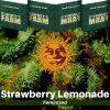 strawberry-lemonade-barneys-farm-feminized-semena-konopi