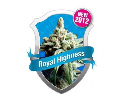 09054 royal highness royal queen seeds
