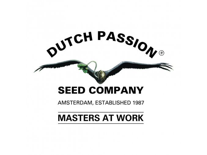 USA Mix Auto | Dutch Passion