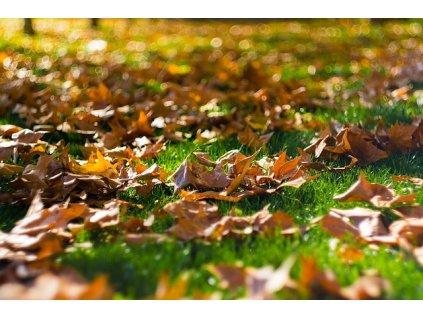 Hnojivo na podzim