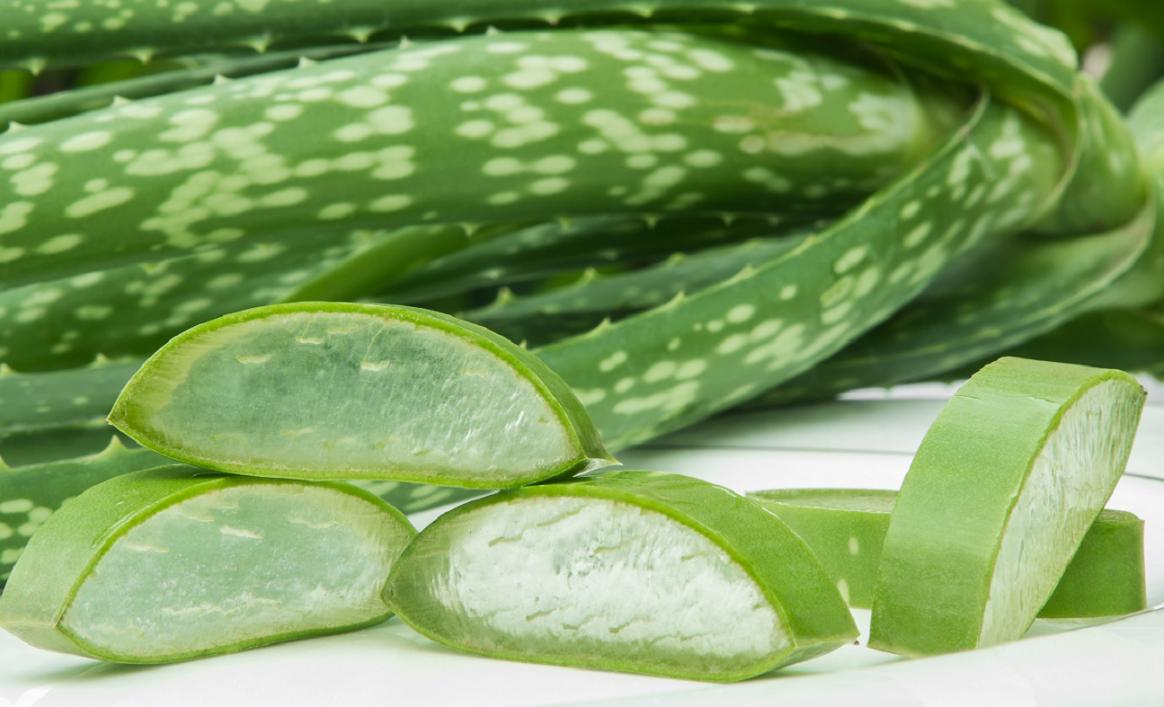7 zdravotních účinků aloe vera při vnitřním užívání