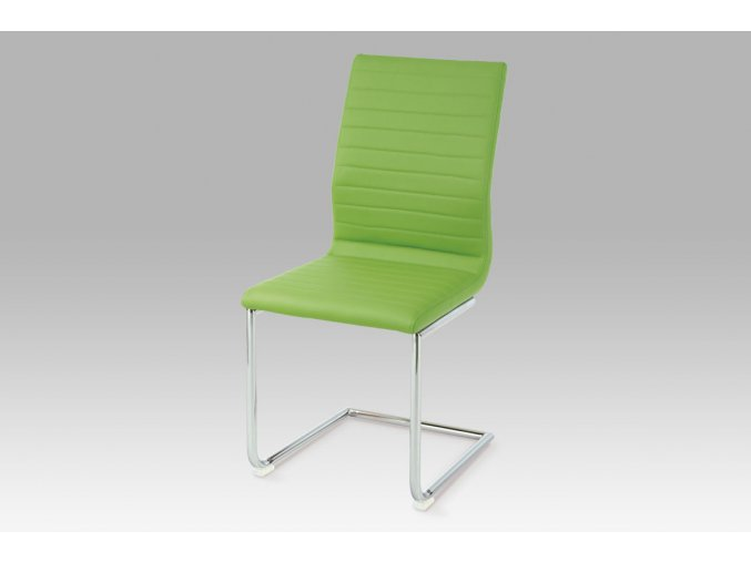 Jídelní židle HC-038-1