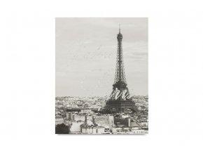 Obraz Paříž OBX1082
