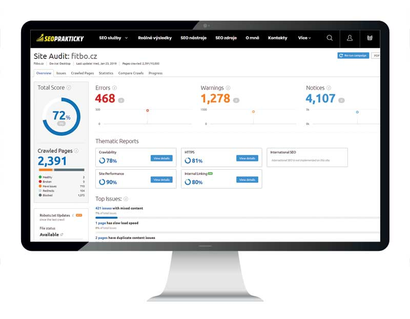 site-audit-on-page-analyza