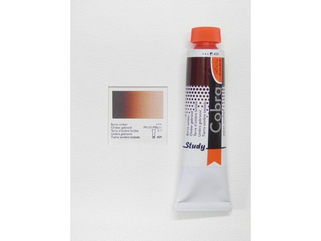 Olejová barva COBRA H2Oil 40 ml - Burnt umber 409