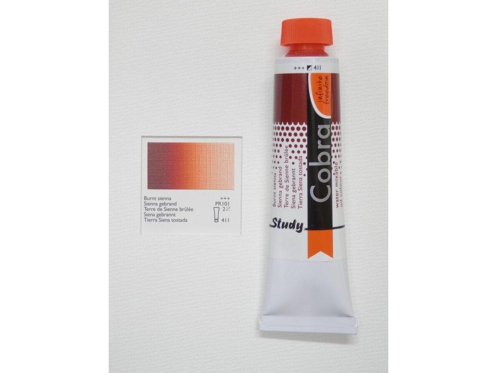 Olejová barva COBRA H2Oil 40 ml - Burnt sienna 411