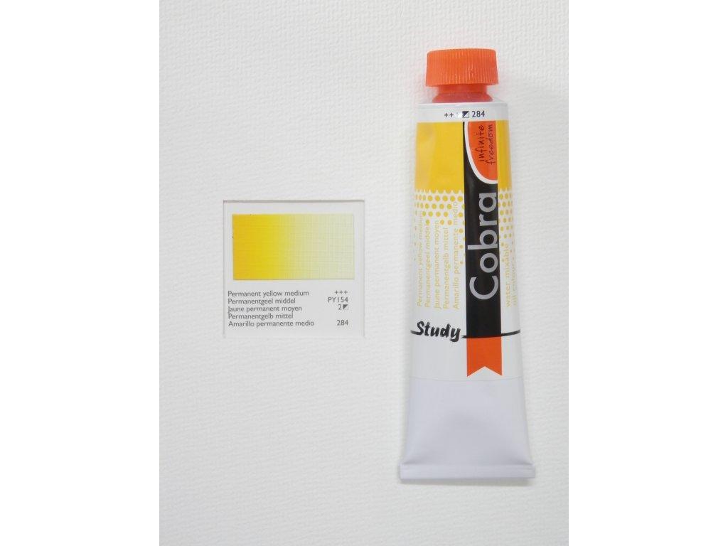 Olejová barva COBRA H2Oil 40 ml - Permanent yellow medium 284