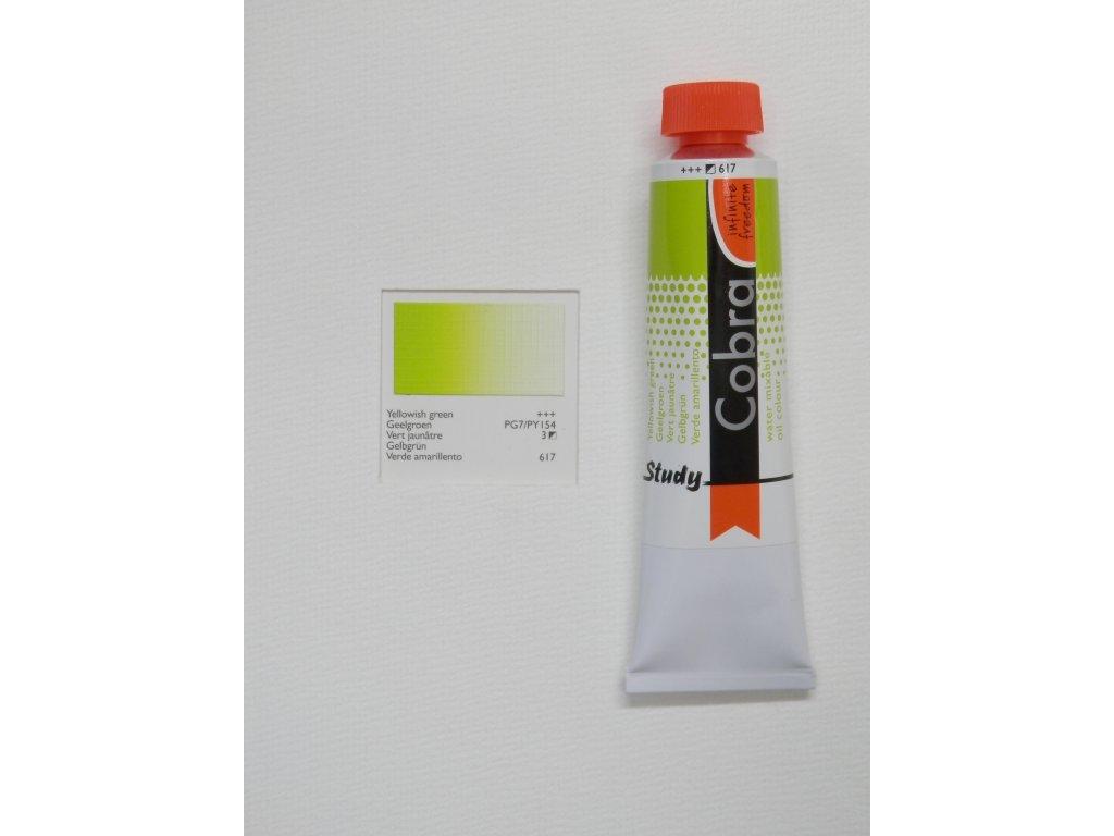 Olejová barva COBRA H2Oil 40 ml - Yellowish green 617