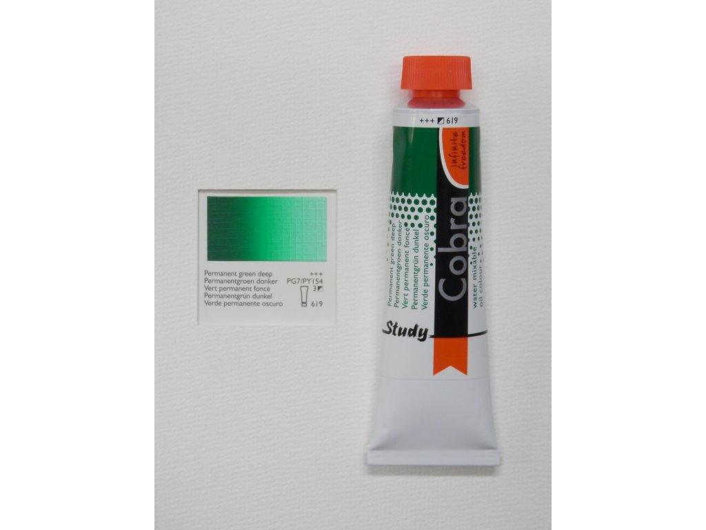 Olejová barva COBRA H2Oil 40 ml - Permanent green deep 619