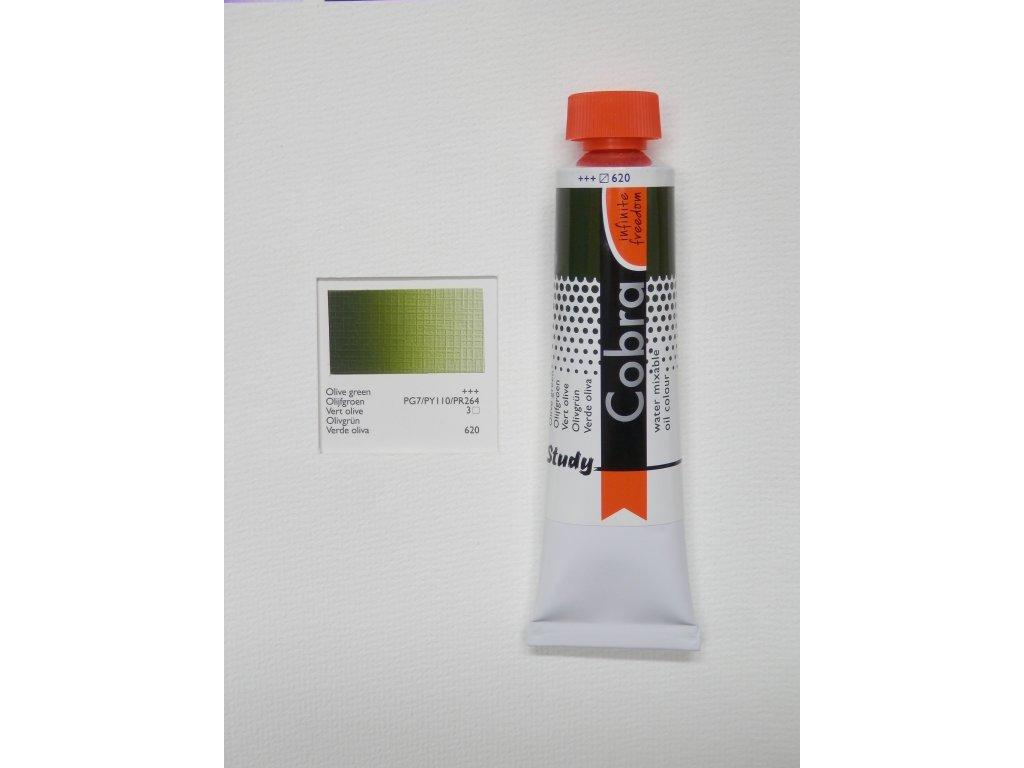 Olive green 620