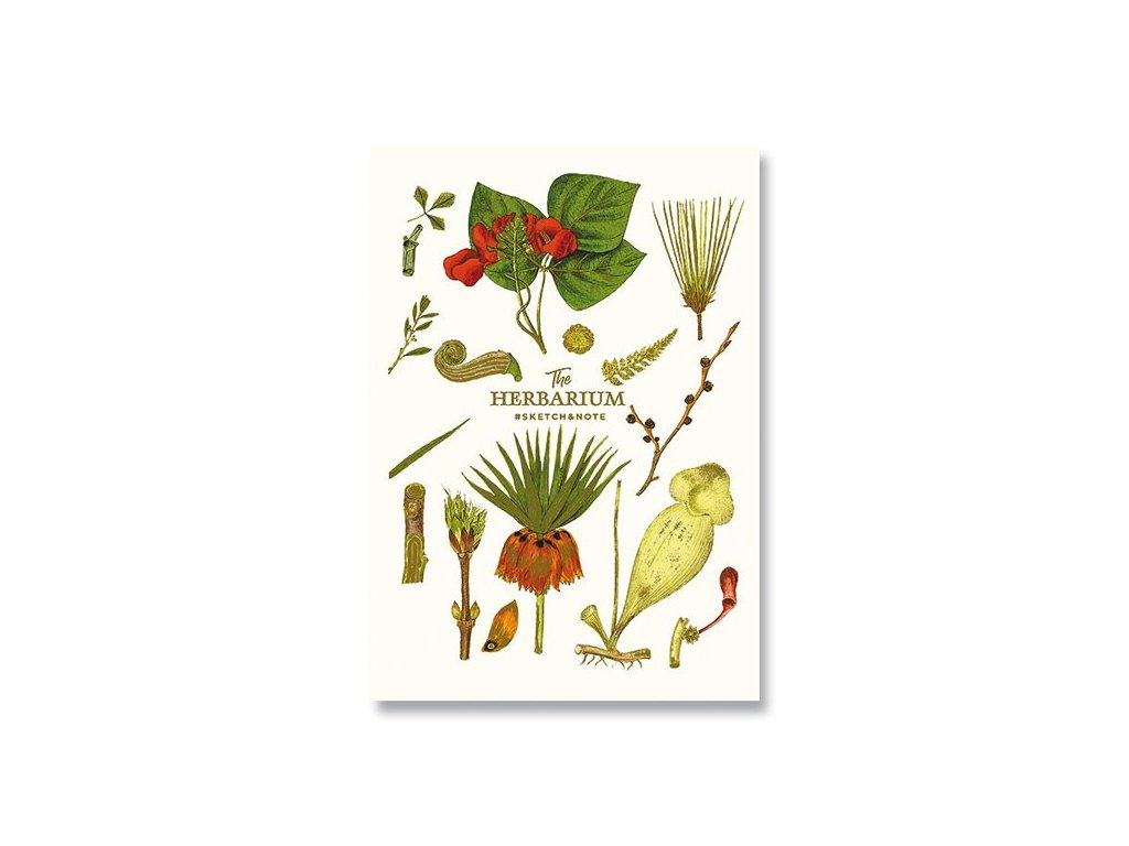 Skicák - náčrtník A5 Herbarium 1