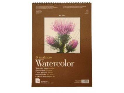 watercolor 27x38