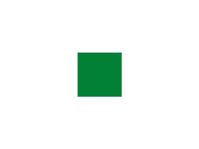 Papír 160 g/m² - A4 tmavě zelený (10listů)