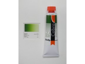 Sap green 623