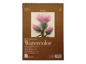 watercolor22x30