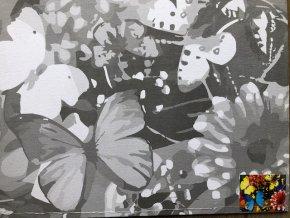 Plátno s motivem - motýli