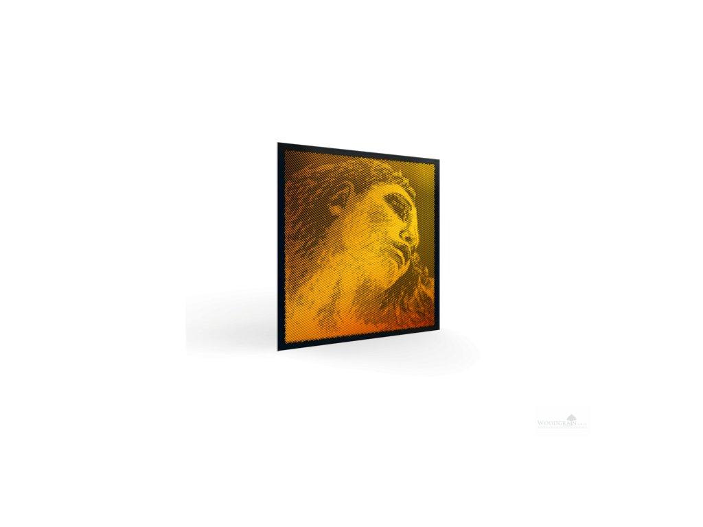 vln evahpirazzigold persp