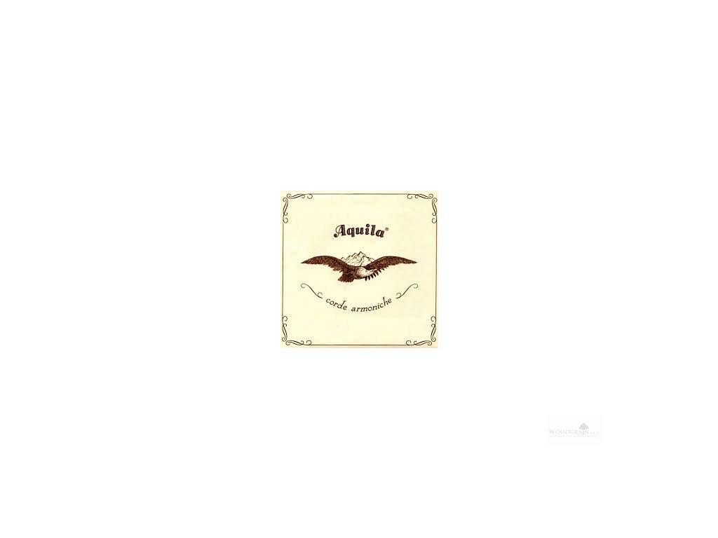 Aquila, Struna Nylgut (D) - opředená (180 cm)