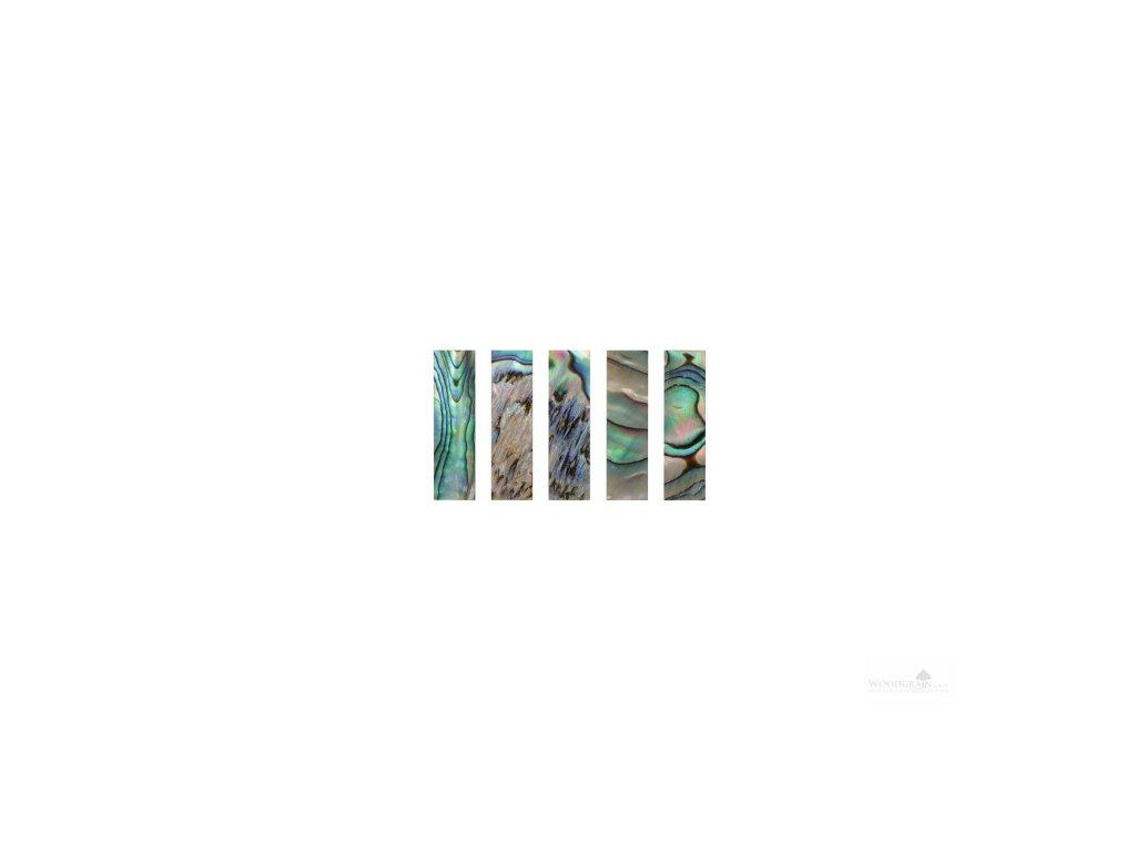 Perleťový krycí plátek žabky - Paua (sada 5 ks)