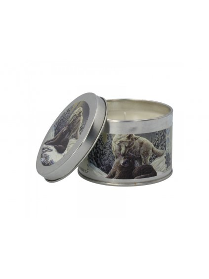 snow kisses tin candle winter breeze pack6