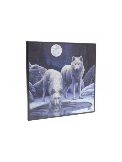 warriors of winter small crystal clear picture 25cm