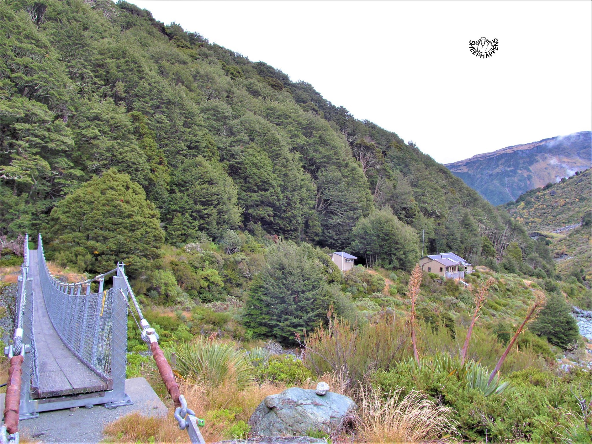 O srubech na Novém Zélandu