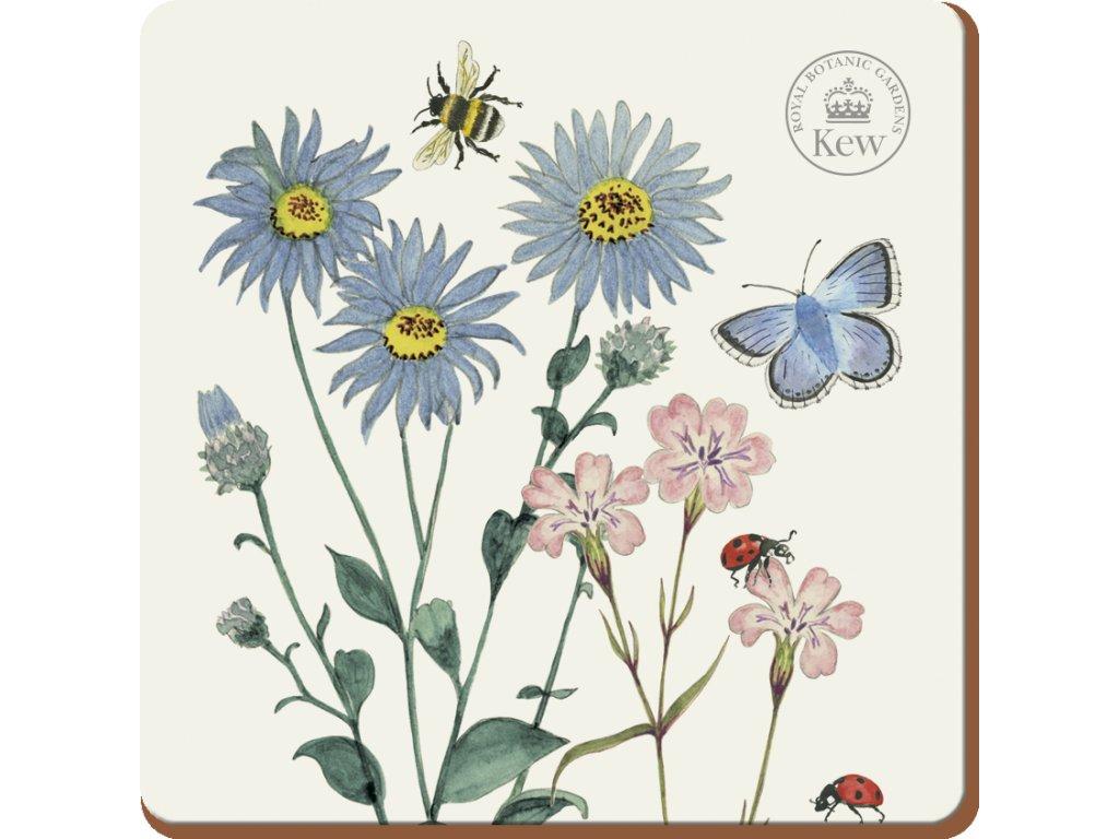 Creative Tops - Korkové podložky pod hrnky Meadow Bugs /10*10 cm/ - 6 ks v balení