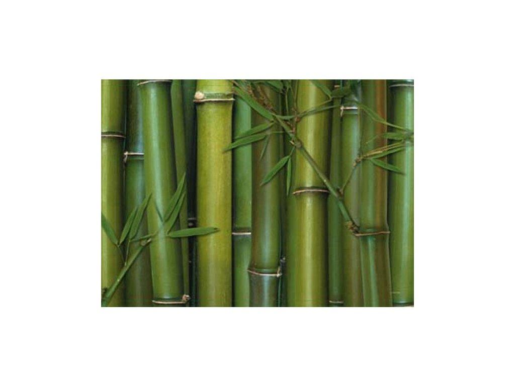 Korkové prostírání Bambus, velké - /40*29 cm/ - 4 ks