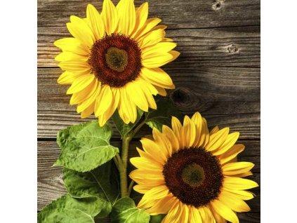 Dezertní třívrstvé ubrousky Two Sunflowers, 20 ks