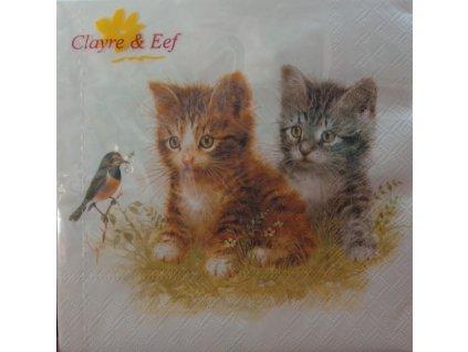 Papírové ubrousky, Koťata s ptáčkem