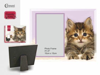 Fotorámeček pro milovníky koček, koťe