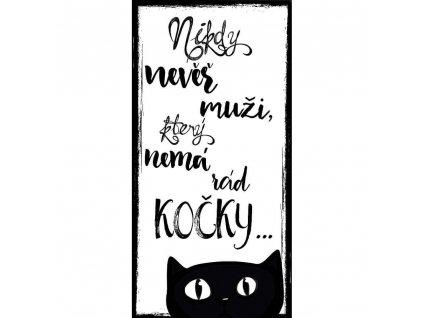 Bohemia Gifts Dekorační obraz na zavěšení 20 x 40 cm - Kočka