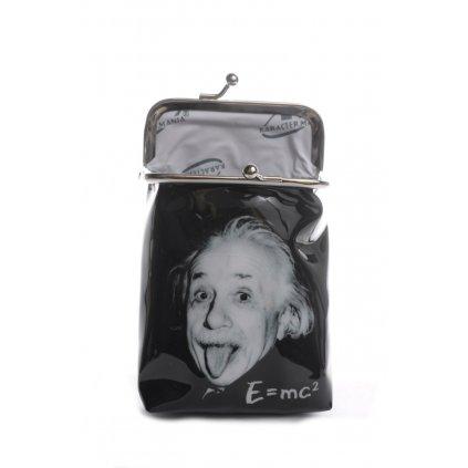 Peňaženka s klipom podlhovastá Einstein E=MC2 (Farba Čierna, Veľkosť 10x7x3cm)