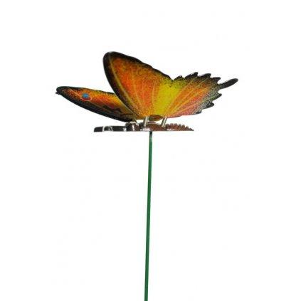 Zapichovačka motýľ (Farba Multifarebné, Veľkosť 12cm)