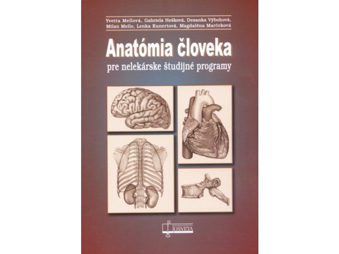 Anatómia človeka pre nelekárske študijné programy