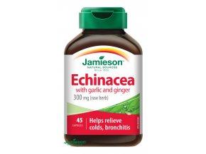 Echinacea s cesnakom a zázvorom