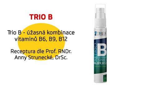 Trio B