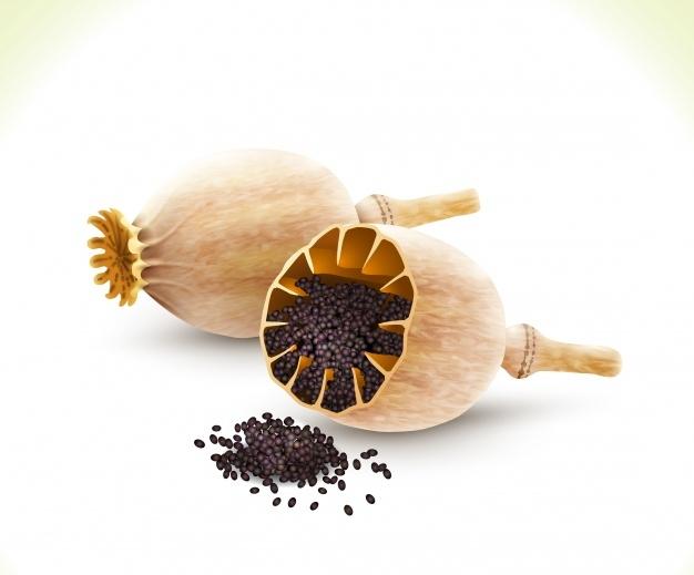 mak-sisky-s-makem-raw-banan-kokosovy-olej-shoprecall