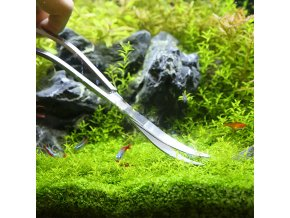 5 main aquarium tools set plants tweezers and scissors grass stainless steel cleaning tools plants fish tank accessories 4 5 6pcsset