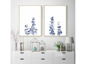 Obrazy Blue Eucalyptus