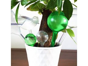 mainimage0House Garden Water Houseplant Plant Pot Bulb Automatic Self Watering Device gardening tools and equipment plant